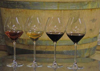 Présentation des vins du Domaine Victor à Maury
